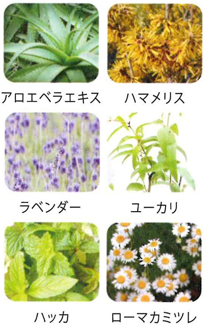 21種類ものハーブ&アロマ